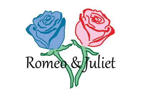 Romeo and Juliet Essay ThePensterscom